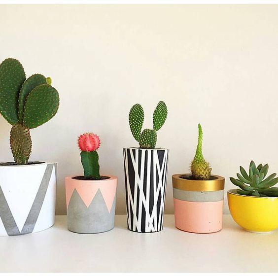 Un projet b ton les rockalouves for Plantas decoradas con piedras